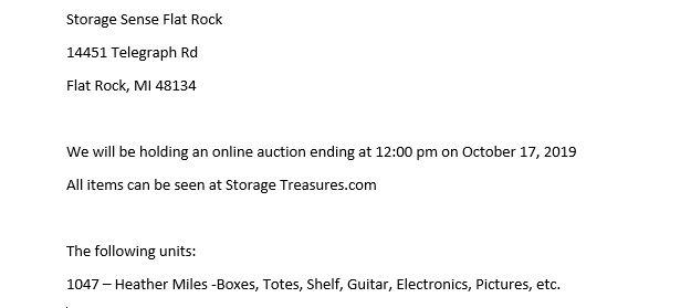 Flat Rock MI Storage Auction