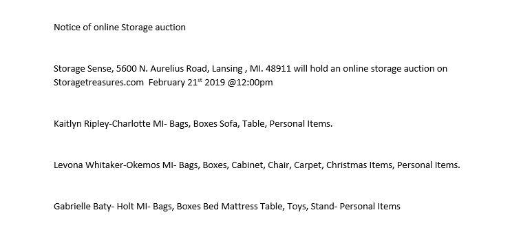lansing mi storage auction