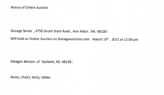 Storage Auction in Ann Arbor MI