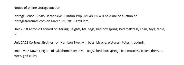storage auction Clinton MI
