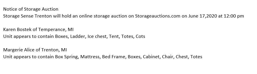 Storage Auction in Trenton MI