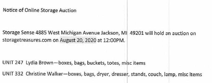 Storage Auction Jackson MI