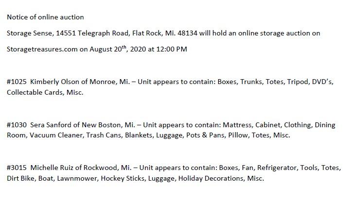 Storage Auction in Flat Rock MI