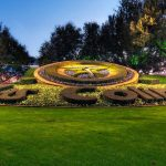 Flower Clock Irving TX