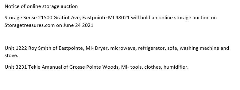 Storage Auction Eastpointe MI