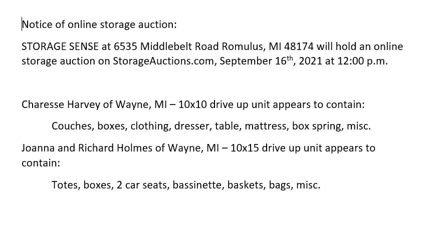 Storage Auction in Romulus MI