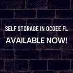 self storage in Ocoee FL